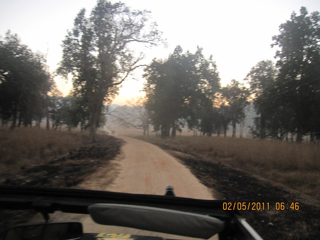 Kanha - Pench Car Trip from Hyderabad (2011) 13