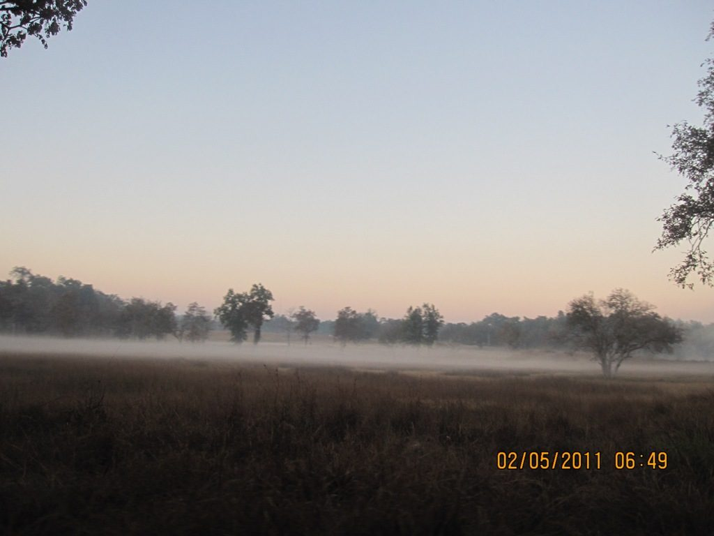 Kanha - Pench Car Trip from Hyderabad (2011) 14