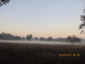 Kanha – Pench Car Trip from Hyderabad (2011)