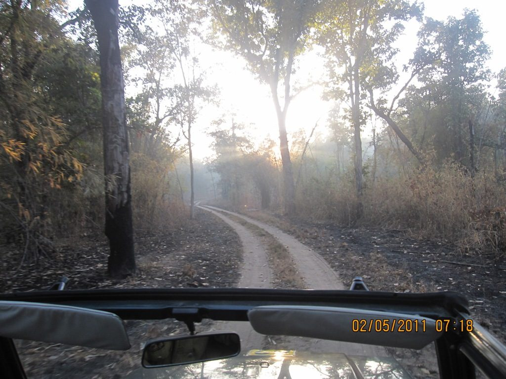 Kanha - Pench Car Trip from Hyderabad (2011) 18