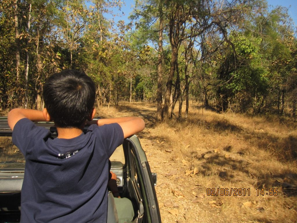 Kanha - Pench Car Trip from Hyderabad (2011) 27
